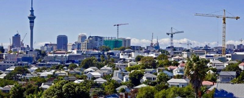 Senior Project Manager Role - Auckland